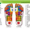 'เท้า' อวัยวะสำคัญที่หลายคนมองข้าม