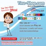 ช่องทางสำหรับรับชำระเงิน Online (http://pay.sn/tinzshop)