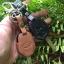 ซองหนังแท้ ใส่กุญแจรีโมทรถยนต์ รุ่นดอกกุญแจ Subaru (Sti) thumbnail 10